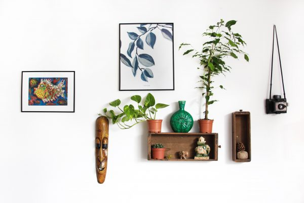 home deco with plants and photo frames