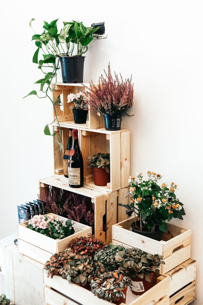 Plant pots, herbs pots, bottles of wine and vases of flowers for wedding celebrations