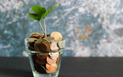 plant with coins in the pot