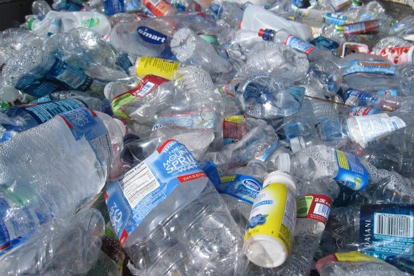 Piles and piles of plastic bottles