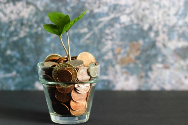 A plant pot filled with pennies and a plant stem coming out of it