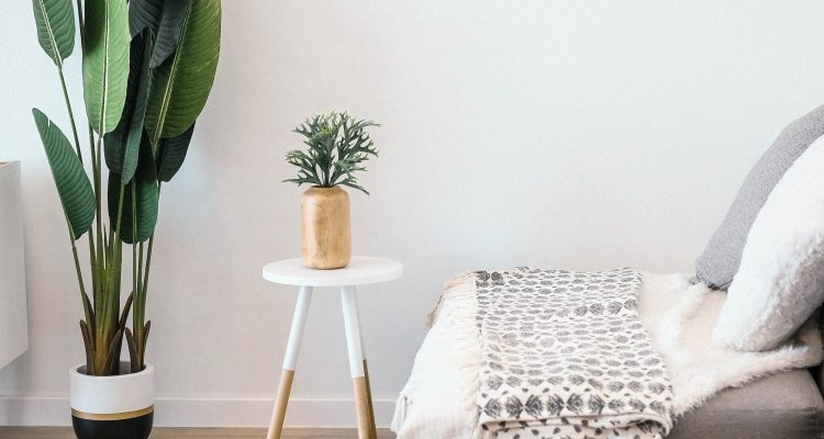 living room with a sofa and plant